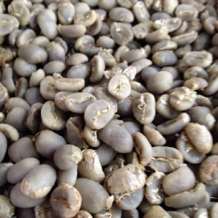Green Beans Toraja Arabica Sapan